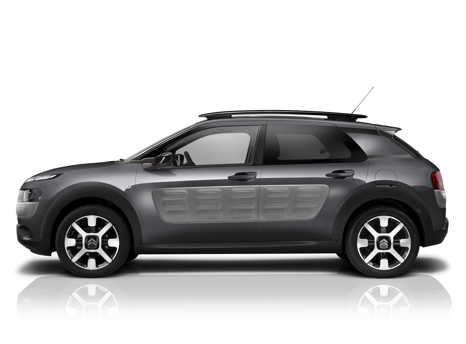 C4 Cactus Shine 2015 Grey Shark