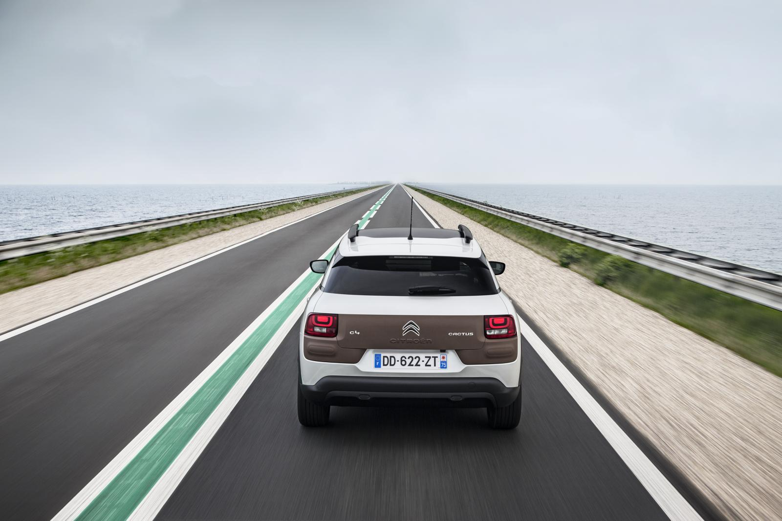 C4 Cactus Shine edition 2014 Amsterdam rear